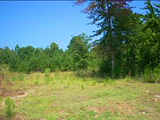 Northeast Columbia Lots and Land