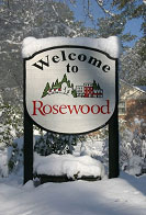Rosewood Homes for Sale Columbia South Carolina